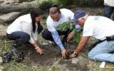 En total serán 11 mil árboles nativos los que se plantarán en el departamento. Foto: Gobernación de Cundinamarca.