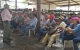 En el departamento del Meta culminó la XIV Gira Técnica Ganadera Nacional. Foto: CONtexto ganadero.