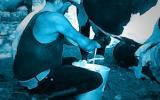 Con estas acciones aumentará la producción láctea en su predio. Foto: CONtexto Ganadero.