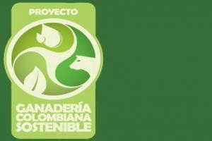 ganadería sostenible, producción limpia, sistemas silvopastoriles
